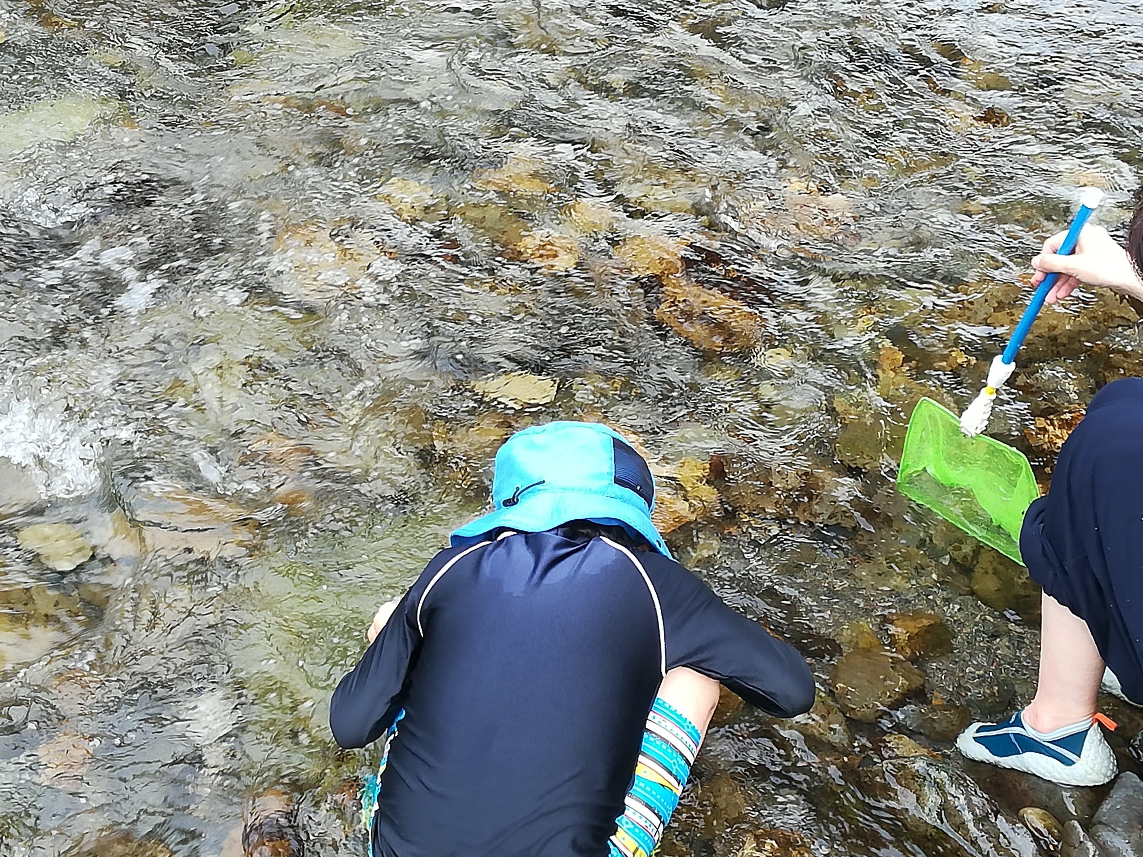 川遊びをする子ども