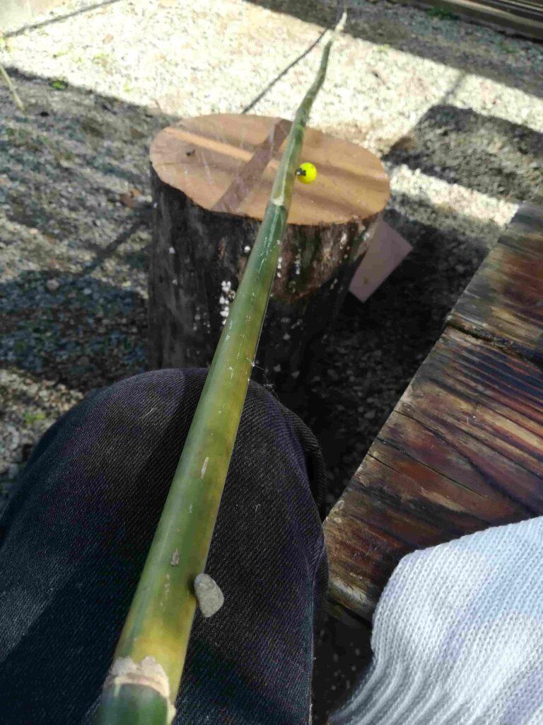 竹の釣り竿作り体験