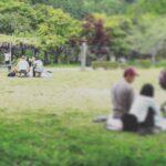 野原公園のピクニック