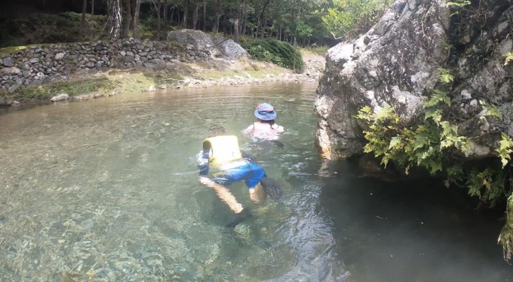 子どもの川遊びの様子